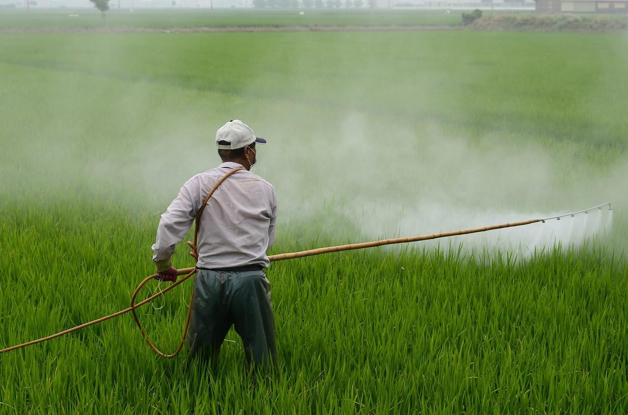 Agretail - Efek Samping Pestisida Bagi Tubuh